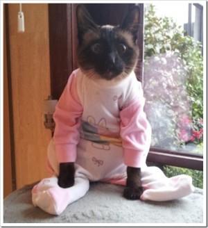 Kat in onesie