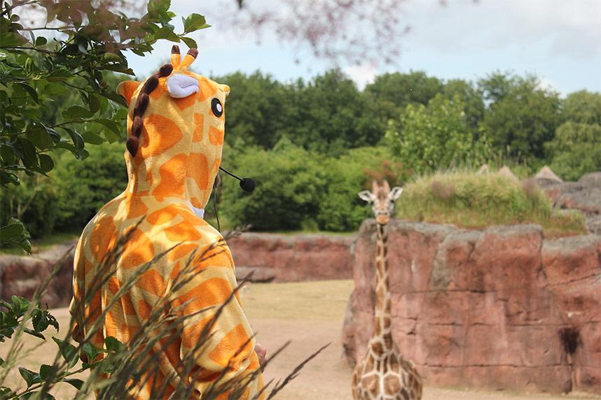 Lex in een giraffe onesie